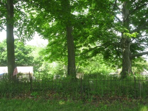 June 5 2015 - Butcher Cemetery view of fenced in area - 2