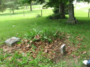 June 5 2015 - Butcher Cemetery with tall weeds behind Phebe Winder footstone