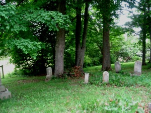 June 5 2015 - Butcher Cemetery with tall weeds
