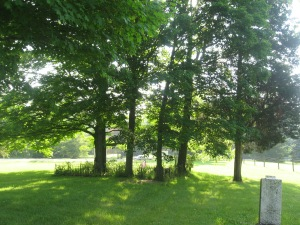 June 7 2015 - Butcher Cemetery looking toward the road