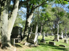 RIDGELAWN CEMETERY - OCTOBER 17 2017 - MONUMENTS ENCROUCHED BY A TREE