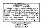 columbus dispatch - january 5 1920 - death of robert limes son of samuel limes burial green lawn cemetery - with text and frame